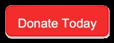 DonateTodayNewBox