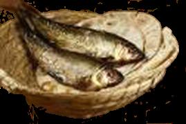 fishandbreadlittleboynoborders